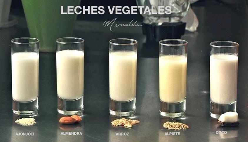 LECHES VEGETALES recetas medicina integral natural Doctor FACUNDO BITSCH